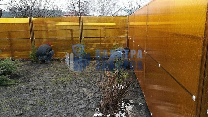 Забор из поликарбоната с забивными столбами 50 метров